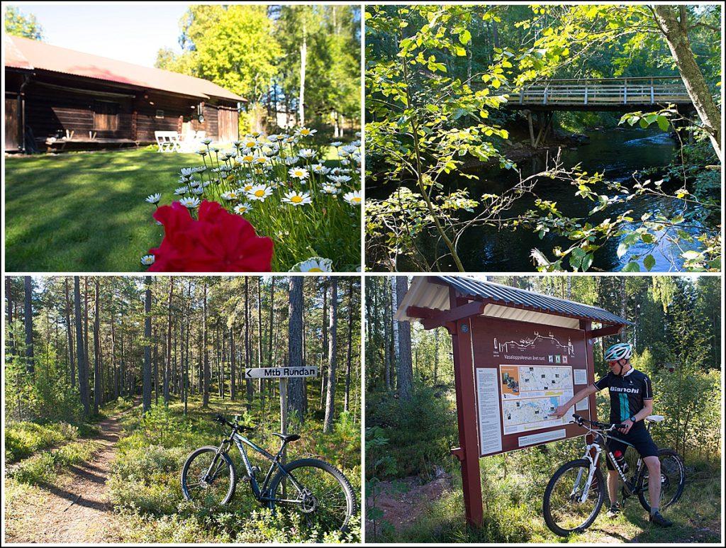 Biking Dalarne