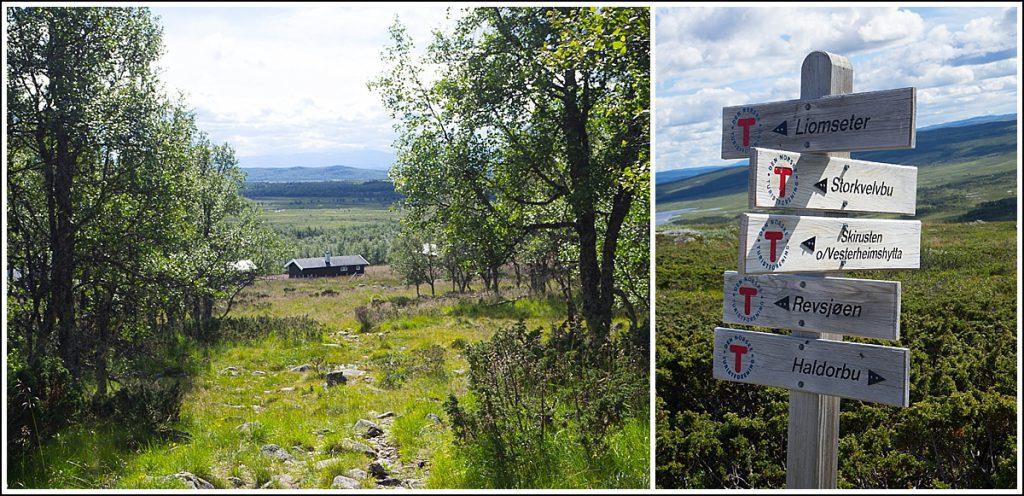 Langsua nasjonalpark Huldreheimen, Haldorbu DNT hytte