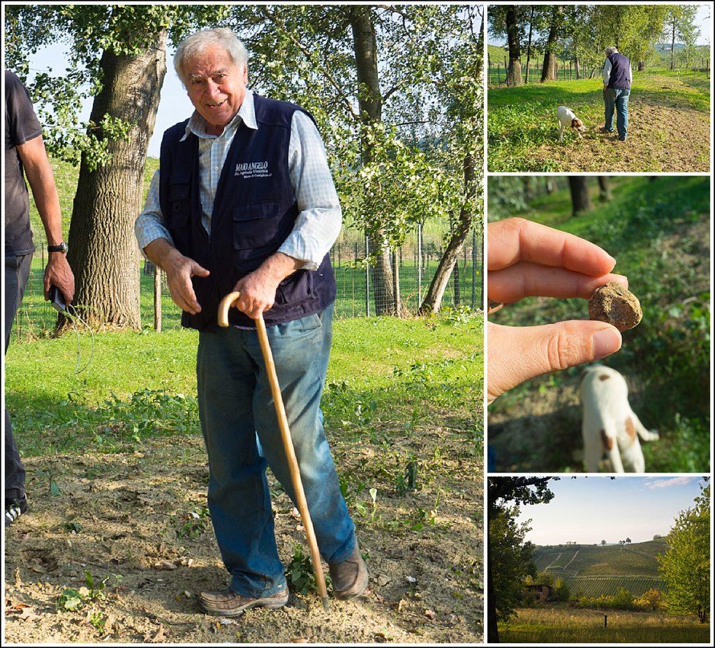 Trøffeljakt i Piemonte