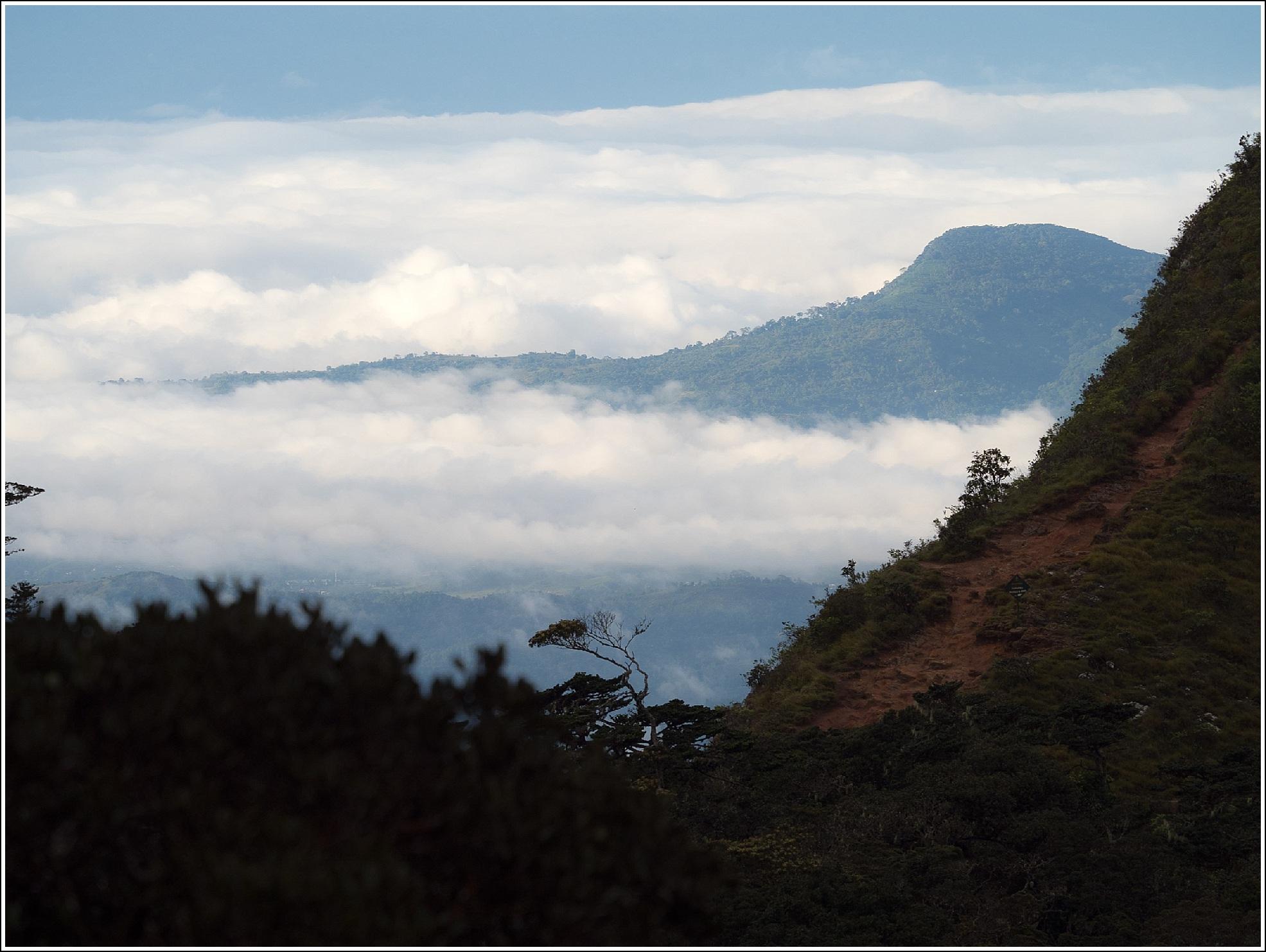 Lækker Te-plantasjer, togtur og verdens ende i høylandet på Sri Lanka VL-01